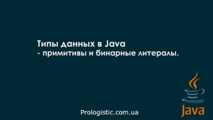 Типы данных в Java - примитивы и бинарные литералы